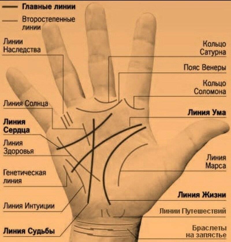 Хиромантия: значение линий на руке, расшифровка с фото