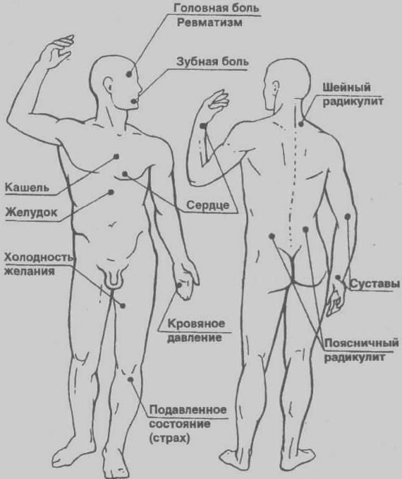 Биологически активные точки на теле человека