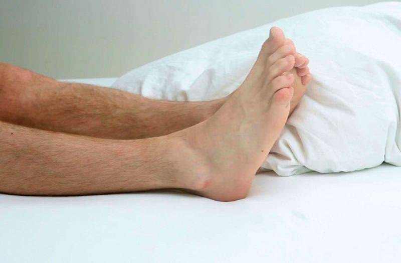Волосатые ногши