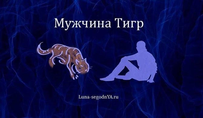 Год тигра знак дева женщина
