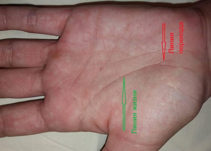 Линия головы (ума) на руке — расшифровка с фото