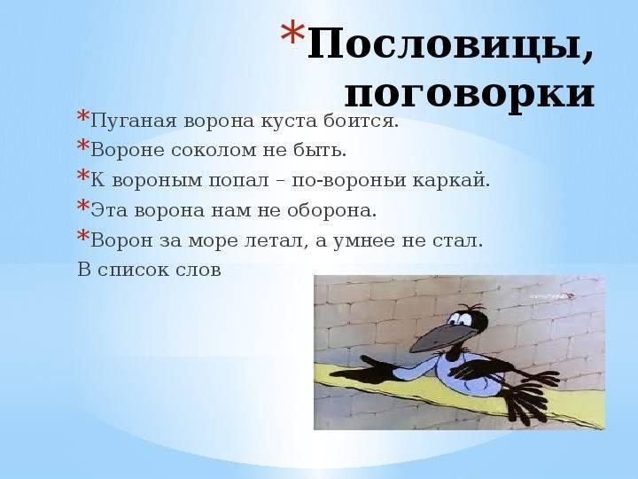 Приметы про воронов. ворон пролетел над головой – примета