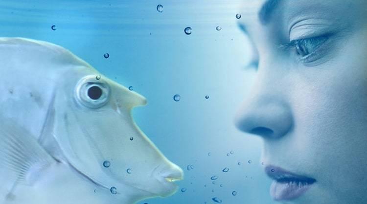 К чему снится рыба по соннику? видеть во сне рыбу  - толкование снов.