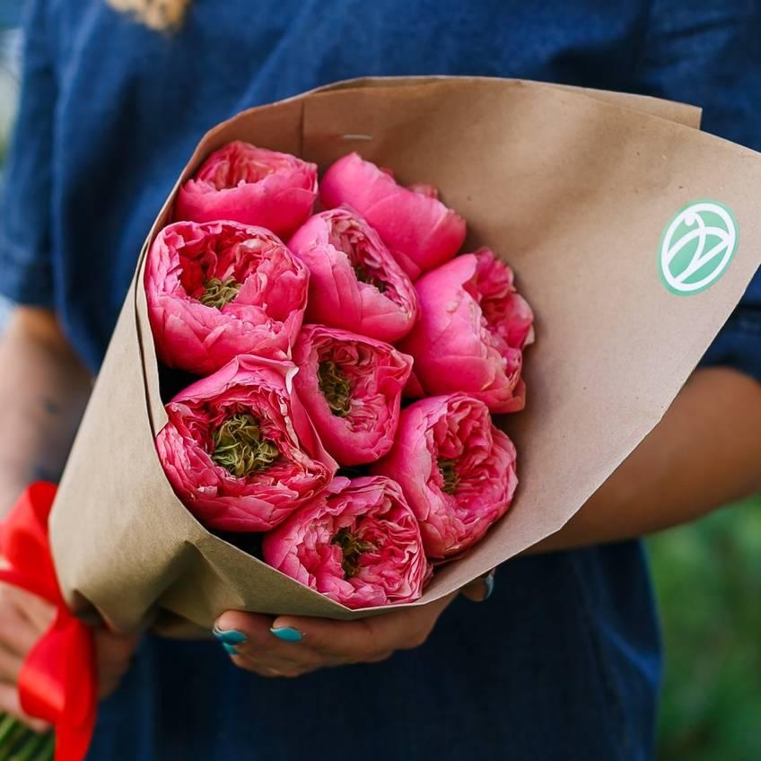 Красная роза — символ страсти, любви и красоты