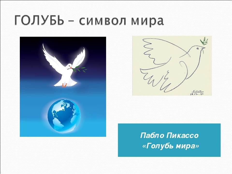 Голубь — птица мира и символ счастья