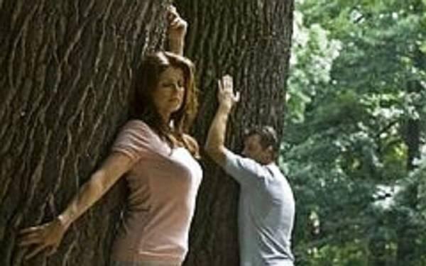 Деревья вампиры и доноры. чем помогут деревья доноры и вампиры? таблицы деревьев доноров и вампиров
