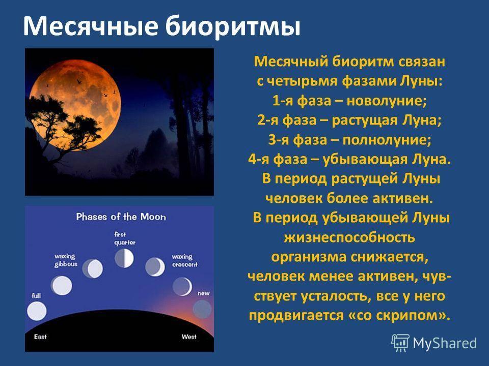 Лунные четверти. о влиянии лунных фаз на самочувствие