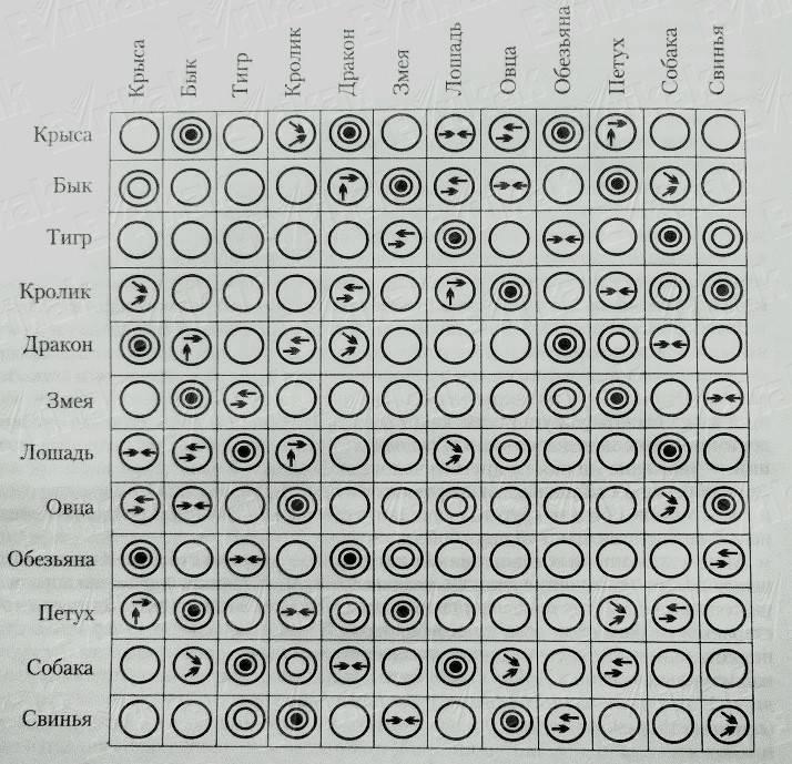 Совместимость по китайскому гороскопу крысы и змеи