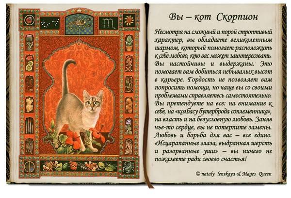 Год кролика гороскоп