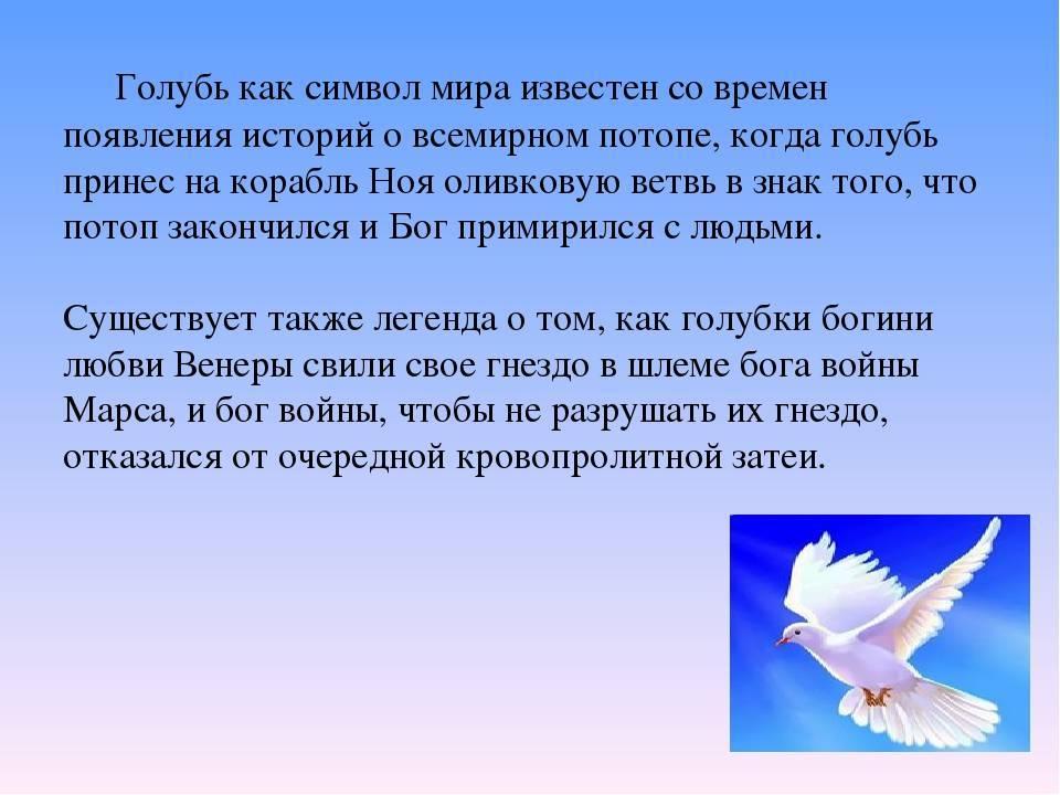 Значение тату голубь с фото и описанием