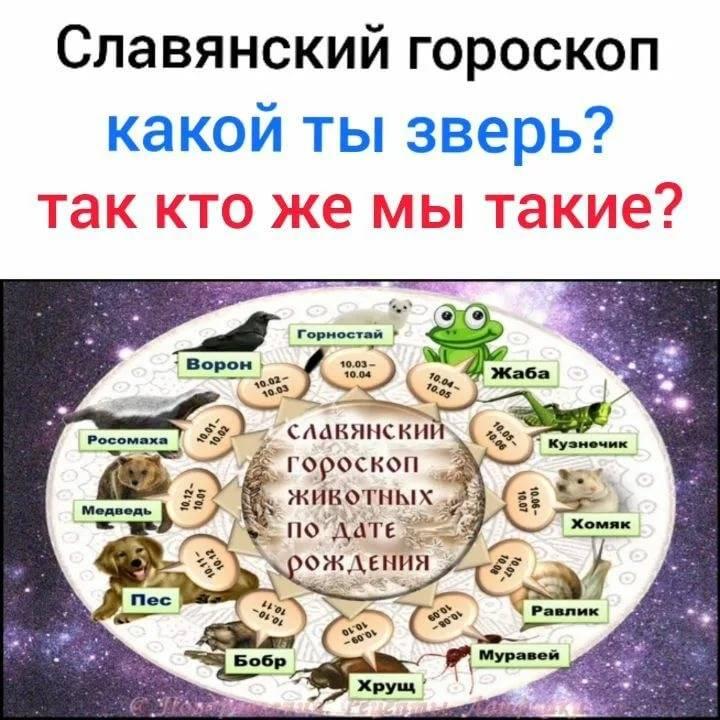 Славянский гороскоп | славяне