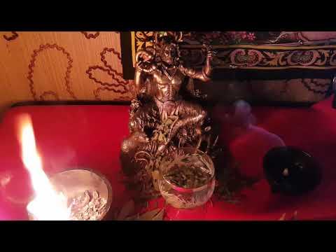 Читать книгу магия вуду. практика ритуалов и заклинаний татьяны звездной : онлайн чтение - страница 7