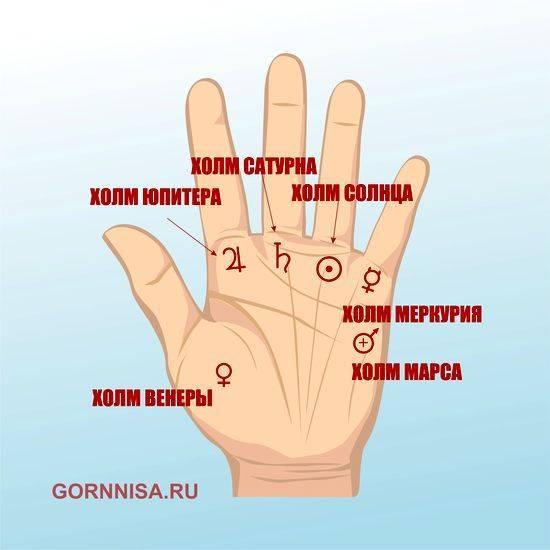 Линия солнца (аполлона) на руке - расшифровка с фото в хиромантии
