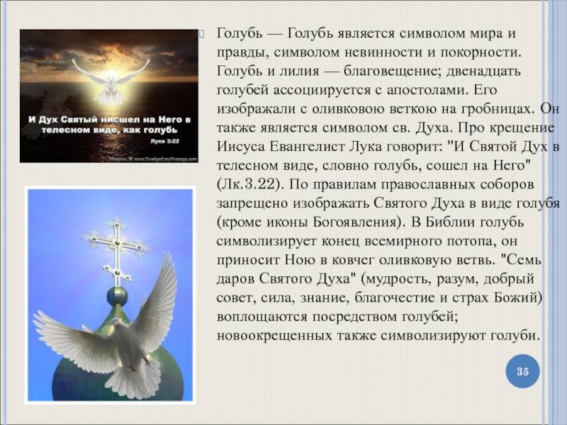 Голуби как символы - doves as symbols - xcv.wiki