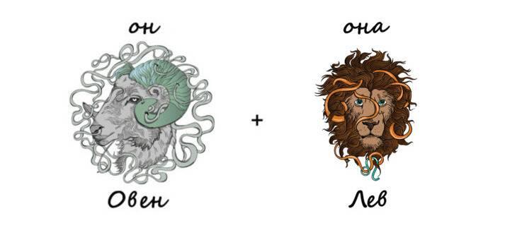 Мужчина-лев, женщина-козерог: совместимость в любви и браке :: syl.ru