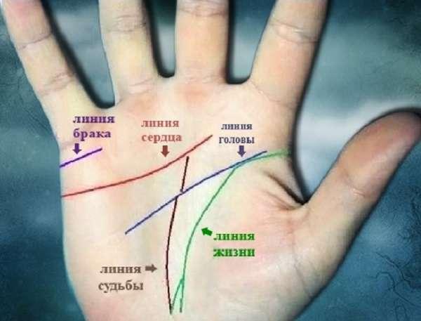 Линии на руке: чтение, расшифровка, значение, фото основных линий. что означают линии на ладони правой и левой руки в хиромантии, гадании?