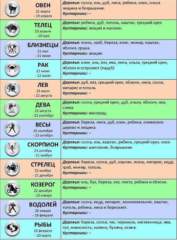 Скорпион - полная характеристика знака зодиака