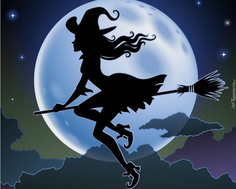 К чему снится метла по соннику? видеть во сне метлу  - толкование снов.