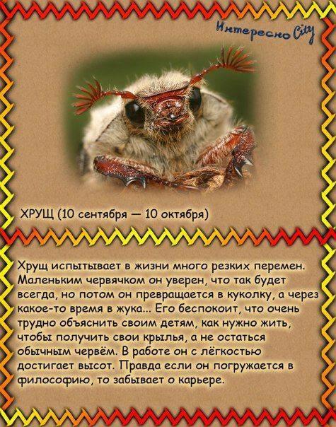 Славянские покровители и обереги по дате рождения
