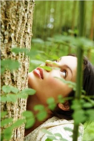 Деревья могут наделить плохой энергией либо забрать её у человека