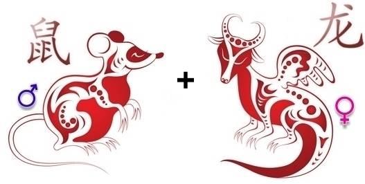 Крыса и змея — совместимость по году рождения, мужчина и женщина