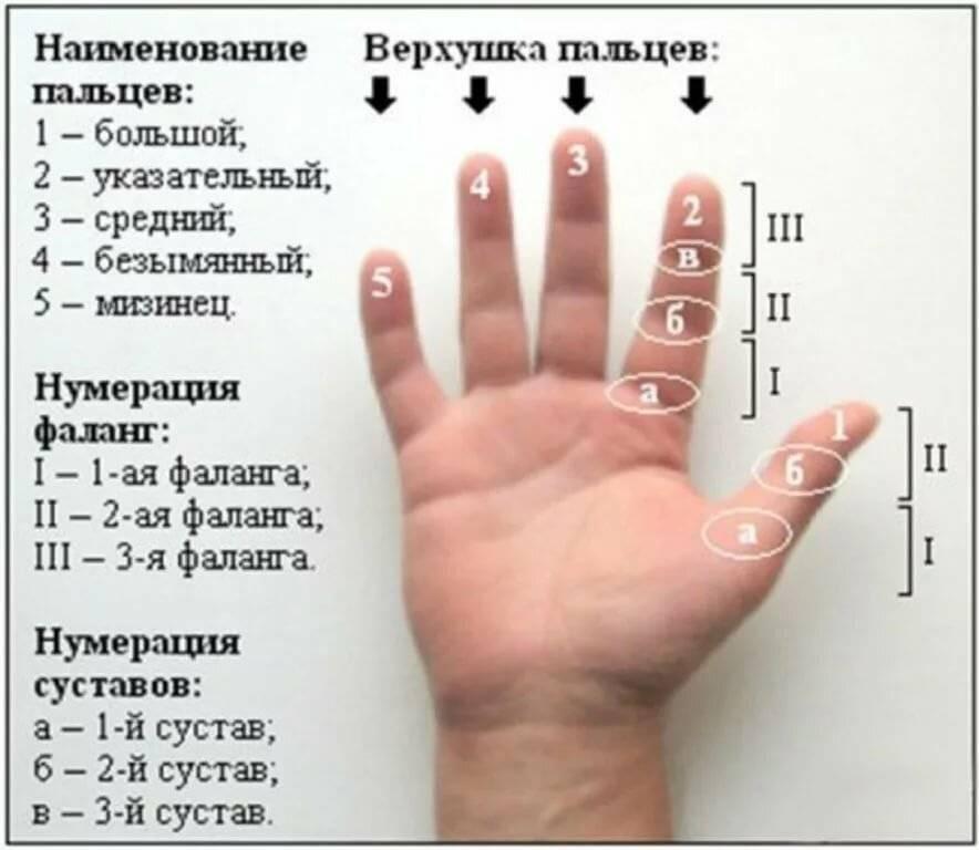 Чешутся пальцы на руках: приметы почему зудят пальцы на правой и левой руках, толкование по дням недели и времени суток.