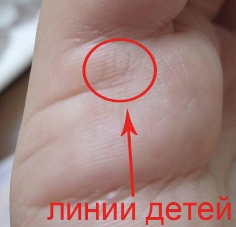 Линия детей на ладони руки у женщин и мужчин: что означает, на какой руке находится – фото, расшифровка. какие линии на руке показывают количество детей: фото с разъяснениями. можно ли определить пол