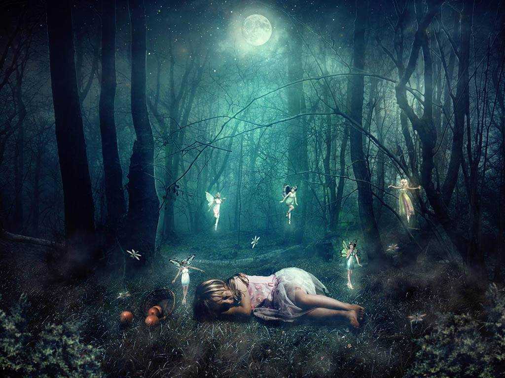 К чему снится лес по соннику? видеть во сне лес – толкование снов.