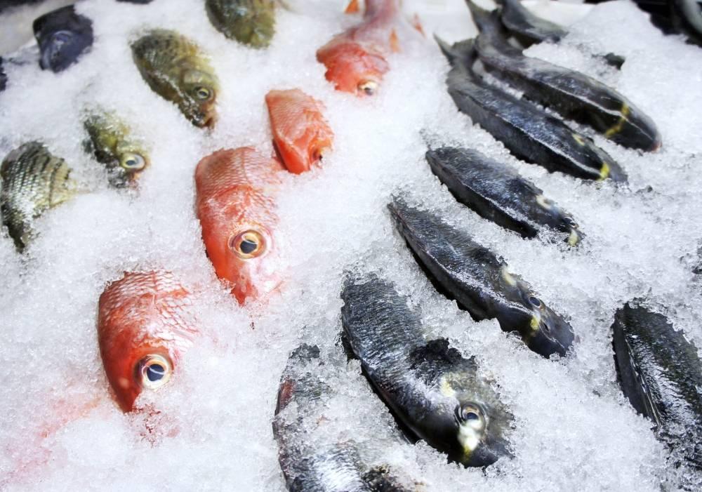 К чему снится много свежей замороженной рыбы женщине