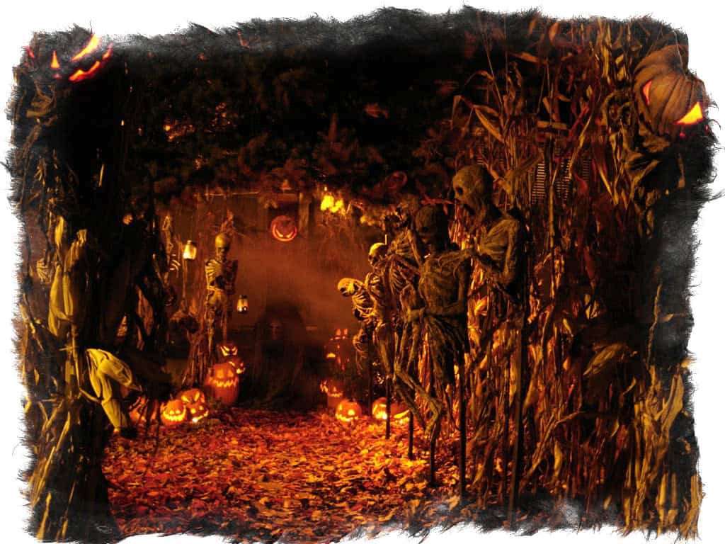 Праздник йоль – история традиций, обрядов и ритуалов
