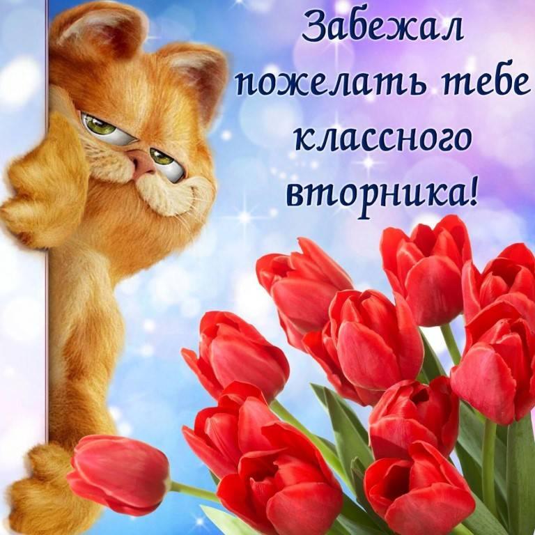 Красивые пожелания хорошего дня и настроения