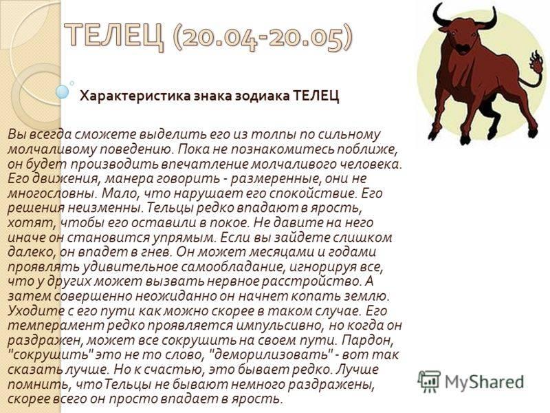 Год быка по китайскому календарю