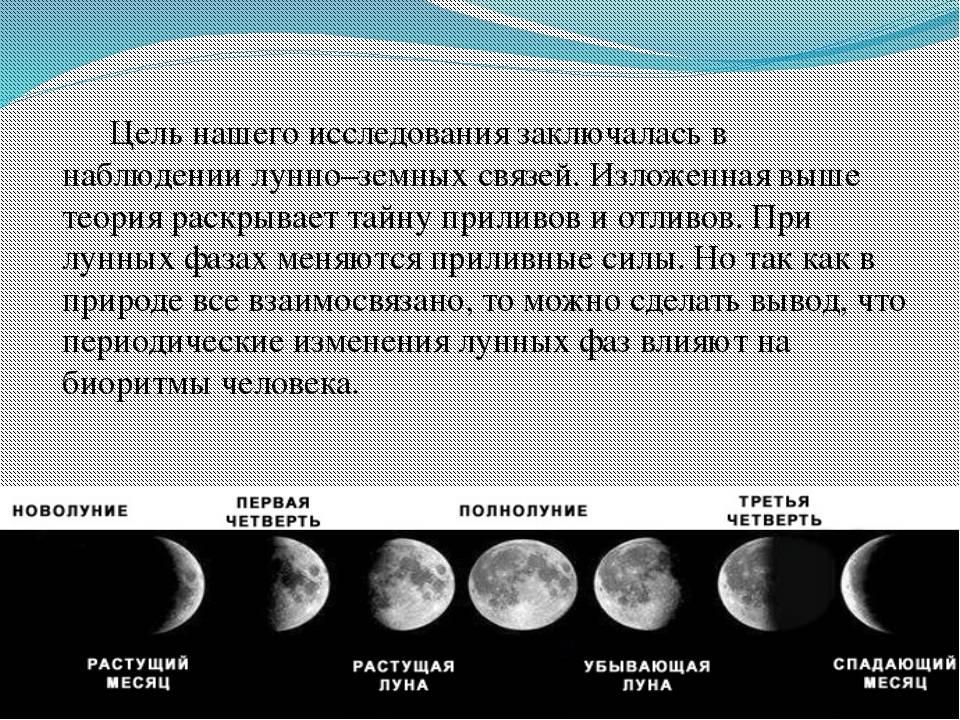 Фазы лунного цикла и садово-огородные работы