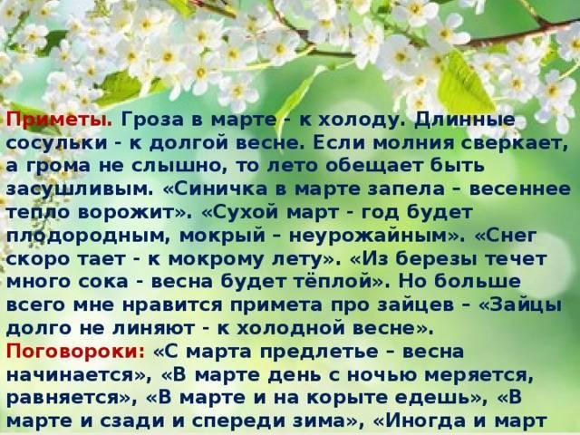 Народные приметы — гроза в апреле и её значение