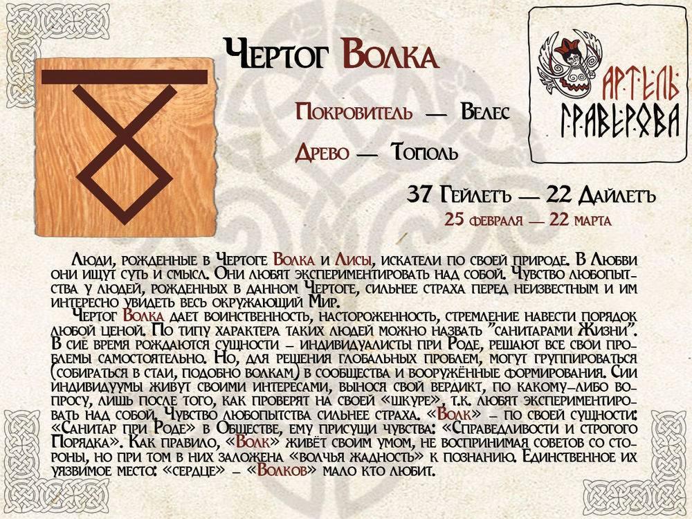 Славянский гороскоп деревьев и растений по дате рождения: определить свой тип в древнем календаре