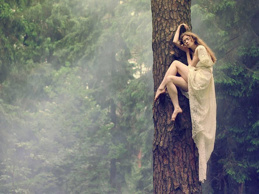 Какое дерево нужно обнять для здоровья и благополучия в семье