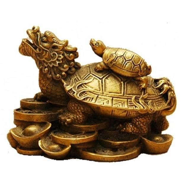 Что символизирует черепаха по фен шуй— статуэтка и живая в доме