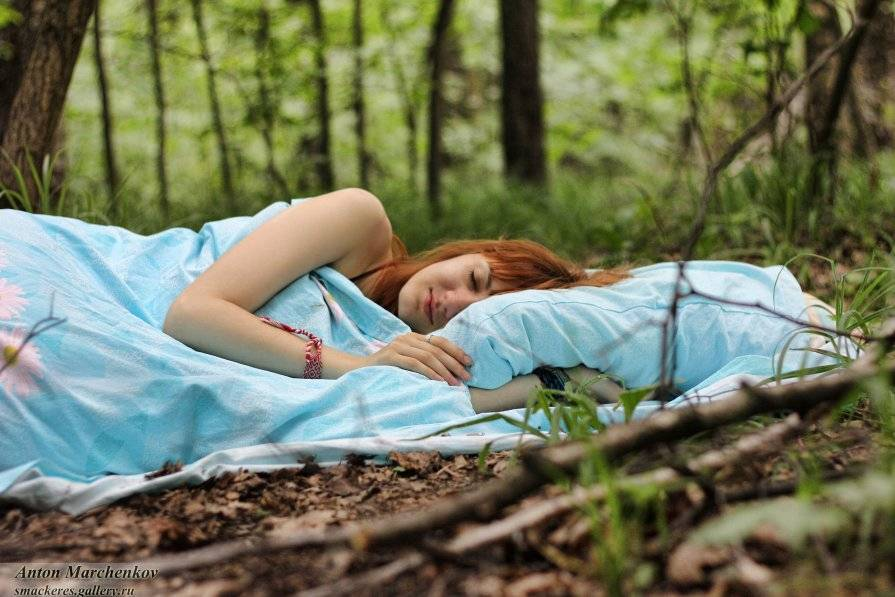 Сонник красивый лес и река. к чему снится красивый лес и река видеть во сне - сонник дома солнца