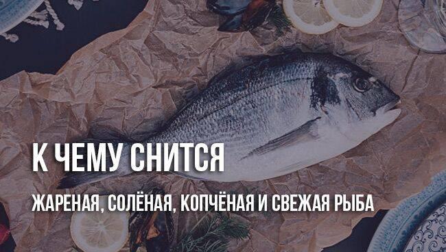 Сонник жареная и копчёная рыба на застолье. к чему снится жареная и копчёная рыба на застолье видеть во сне - сонник дома солнца