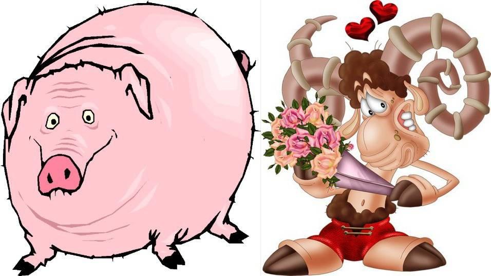 Год кабана (свиньи) гороскоп – любовь совместимость