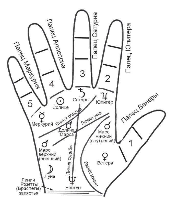Знаки на руке: хиромантия, значение жестов, ромб, трезубец и другие магические символы на ладонях