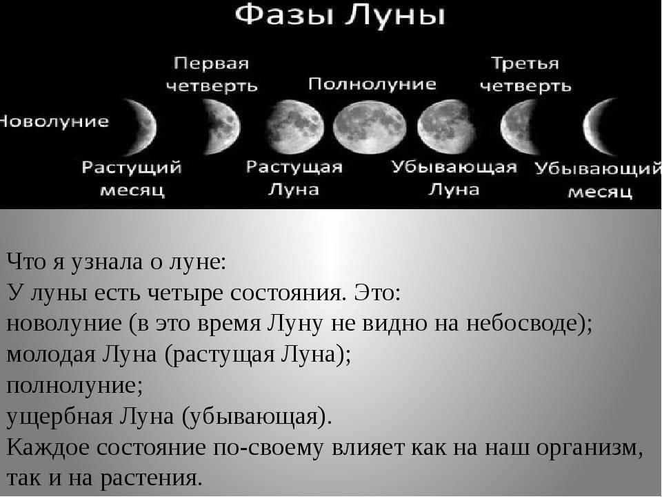 Что зависит от луны: влияние фаз луны на человека