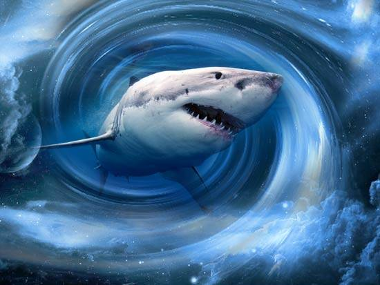 К чему снится акула: значение и толкование сна