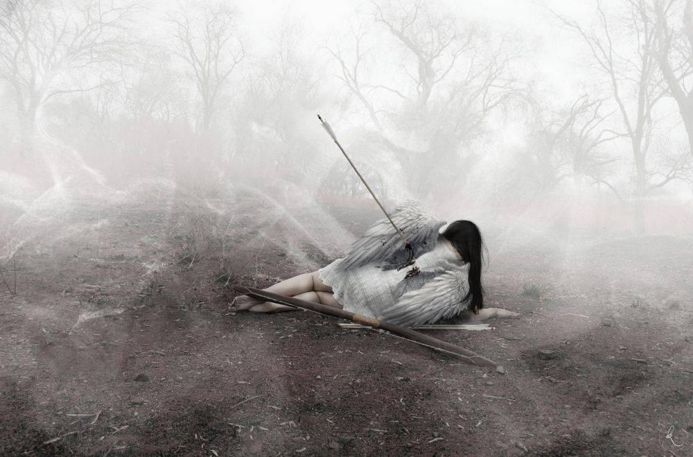 Сонник ожившие мертвые птицы. к чему снится ожившие мертвые птицы видеть во сне - сонник дома солнца
