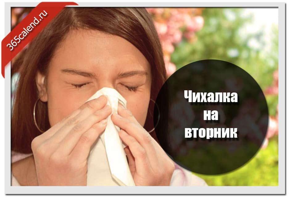 К чему чихается в понедельник: толкования по часам на весь день