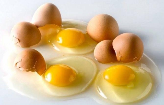 К чему снится сырые яйца женщине или мужчине - толкование сна по сонникам