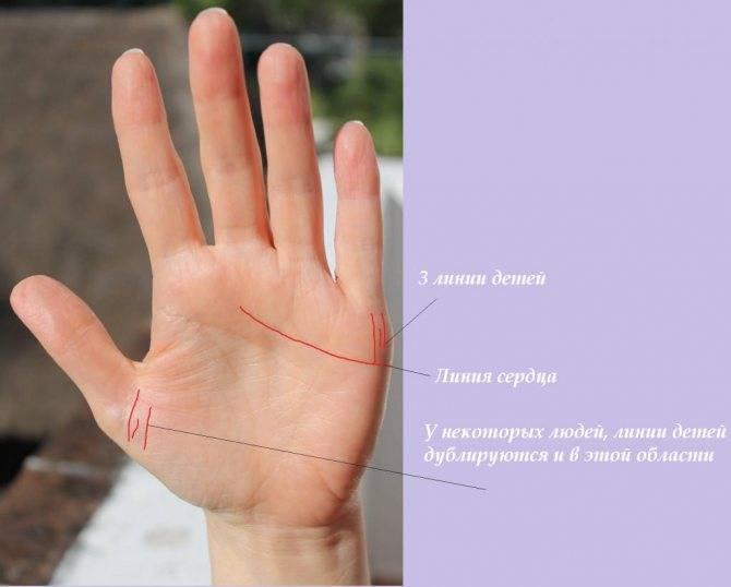 Как по линиям руки узнать сколько будет детей