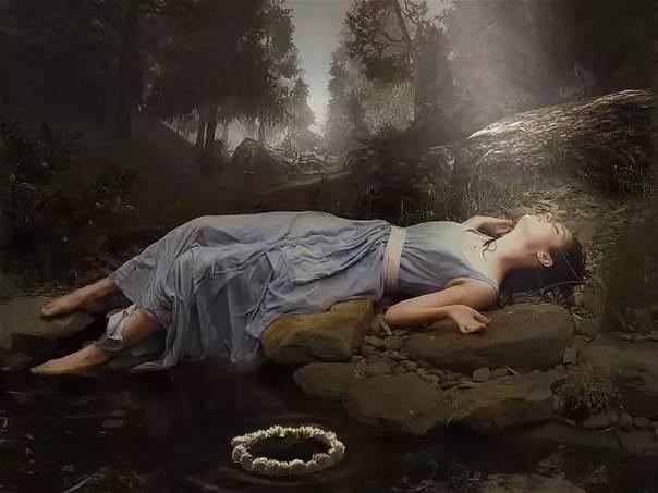 К чему снится белый лес по соннику? видеть во сне белый лес – толкование снов.