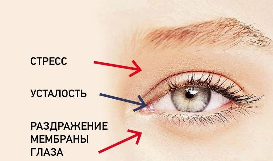 Почему у вас дергается глаз: основные причины и значение