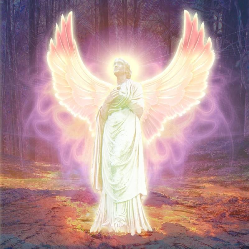 Земные ангелы. 6 признаков того, что вы один из них